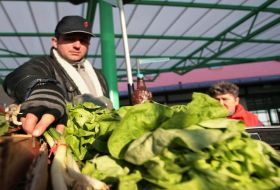 romania-imports-half-of-the-necessary-of-vegetables