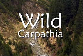 wild-carpathia-un-documentar-despre-romania-prezentat-in-sua